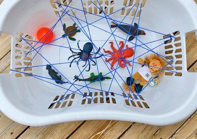 Spider Web Basket